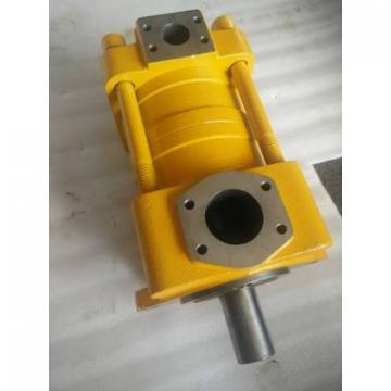 SUMITOMO Original import Series Gear Pump QT33-16E-A